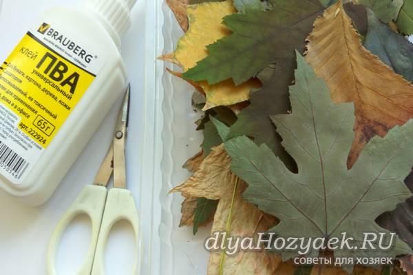 листья и клей