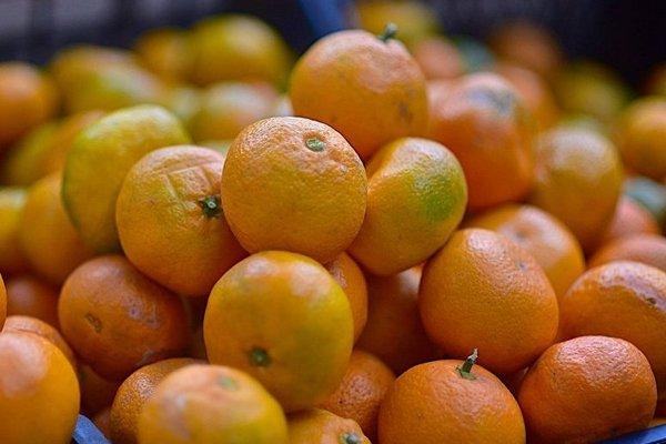 Какие фрукты выращивают в Испании и когда они созревают{q}