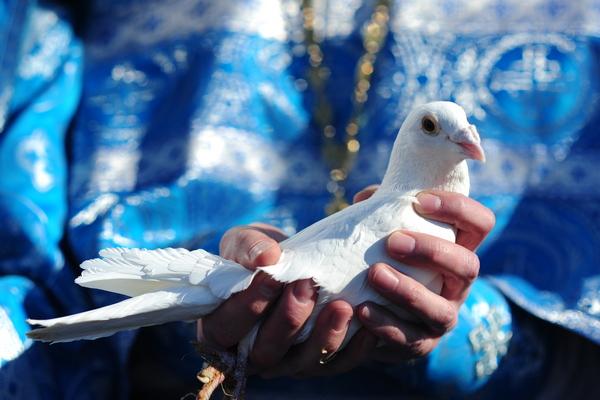 отпускание птиц на Благовещение